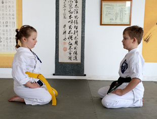 Reiwaryu Ryushinkan children's karate class Brighton