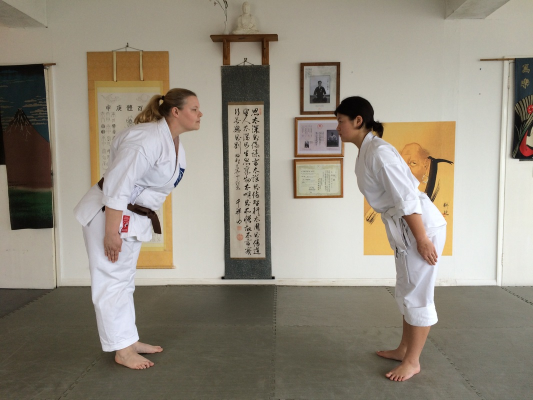 Reiwaryu Ryushinkan Adult Karate Class Brighton